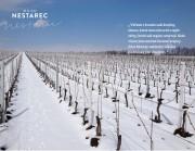 Killer Thurgau, 2015, Vinařství Nestarec