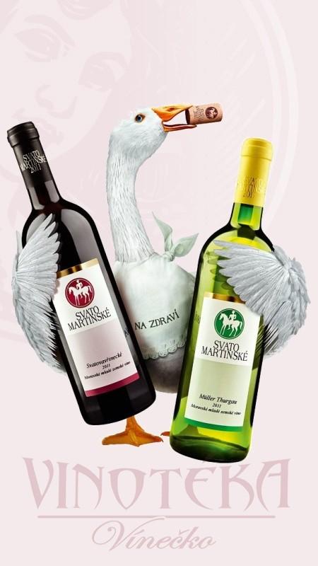 Svatomartinské víno, Modrý Portugal, moravské zemské 2019, Vinařství Vajbar