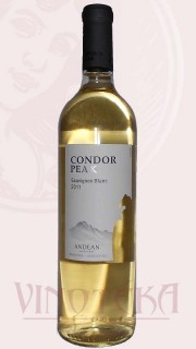 """Sauvignon Blanc """"Condor Peak"""", 2016, Andean"""