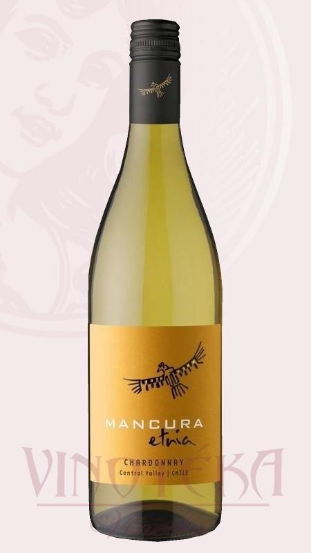 Chardonnay Mancura, Morandé