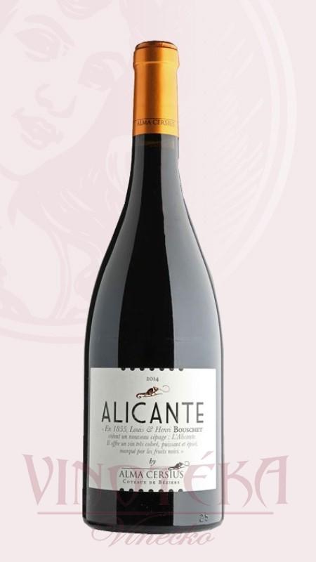 Alicante Alma Cersius