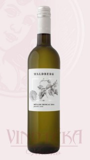 Müller Thurgau, jakostní, Vinařství Waldberg
