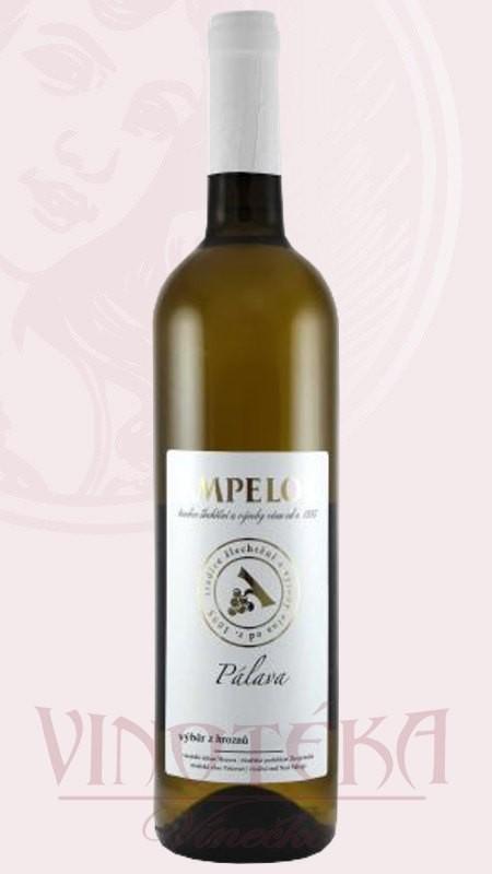 Pálava, Vinařství Ampelos